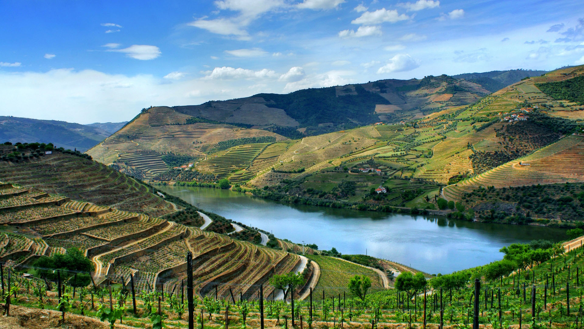 Encosta do Douro, Portugal